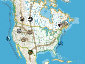 A map showing landscape-level wildlife movement corridors in North America.