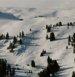 Avalanche in the backcountry near Loveland Pass, Colorado.