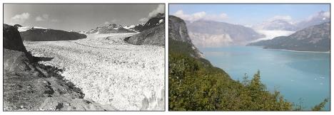 Muir Glacier 1941 to 2004