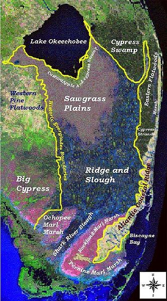 Major landscape types in the Everglades before human action. USGS map.
