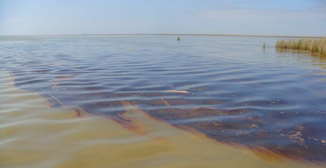 Oil in the Gulf of Mexico. PHOTO COURTESY U.S. COAST GUARD.