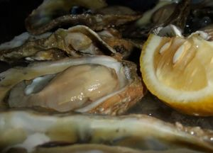 Some of the best oysters in the world come from Apalachicola Bay.