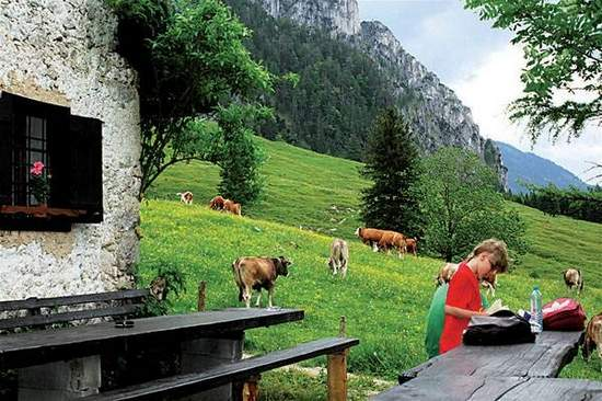 Taking a lunch break during a search for orchids in the Austrian countryside.