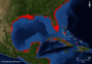 If sea levels rose to where they were during the Last Interglacial Period, large parts of the Gulf of Mexico would be under water (red areas), including half of Florida and several Caribbean islands. Credit: Jeremy Weiss, Department of Geosciences, The University of Arizona.