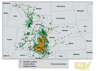 This Colorado Division of Wildlife map gives a general idea of the distribution of lynx in the Rockies through 2007.