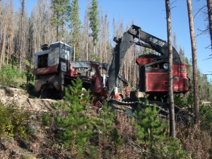 Heavy machinery is on the move in the quest to restore Summit County's forests.