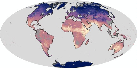 Land surface temperatures are depicted in this NASA Earth Observatory map. Click on the image for more information.