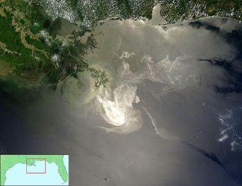 A NASA satellite image shows the oil slick from the Deepwater Horizon disaster spreading across the northern Gulf of Mexico in late May, 2010.