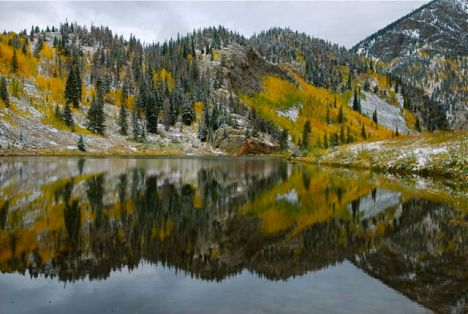 Even high mountain lakes are feeling the sting of nitrogen pollution.
