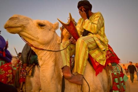 Festival au desert, camels, desert