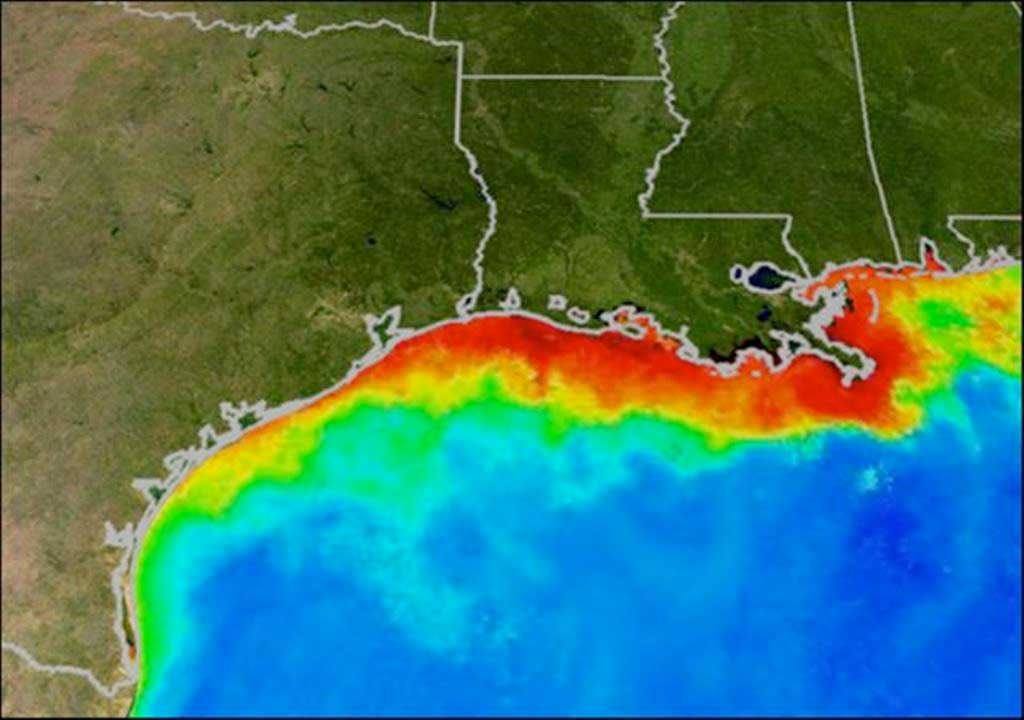 A NOAA graphic shows the impacts of nutrient loading by highlight oxygen-starved dead zones in red.