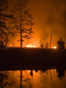 Whitewater-Baldy Fire photo
