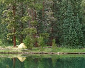 A peaceful campsite along Officers Gulch Pond, formed when crews were building Interstate 70 through a narrow mountain canyon.