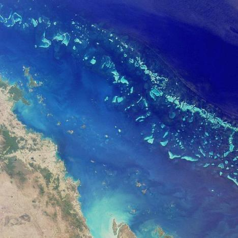 A NASA satellite photo shows a slice of Australia's Great Barrier Reef.