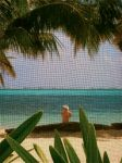 Looking out at the Caribbean through a screened window in Belize.