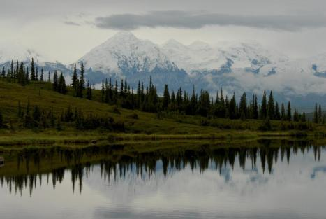 The Alaska Range viewed across Wonder Lake.