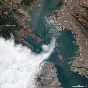 A layer of marine fog hugs the coastline at San Francisco Bay in this satellite image from the NASA Earth Observatory project. Click on the image to visit the NASA site.