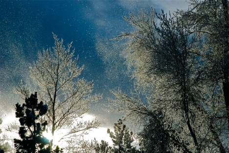 Sometimes the air itself sparkles with cold winter frost.