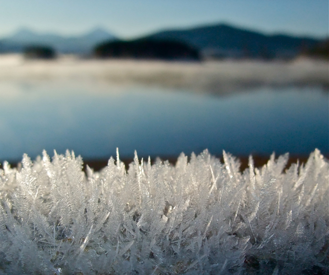 Hoar frost feathers sparkle on a log near Dillon Reservoir.