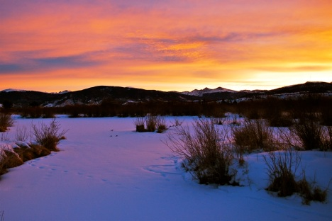 Sky colors in the snow in this mid-week sunrise at the Meadow Creek wetlands in Frisco, Colorado.
