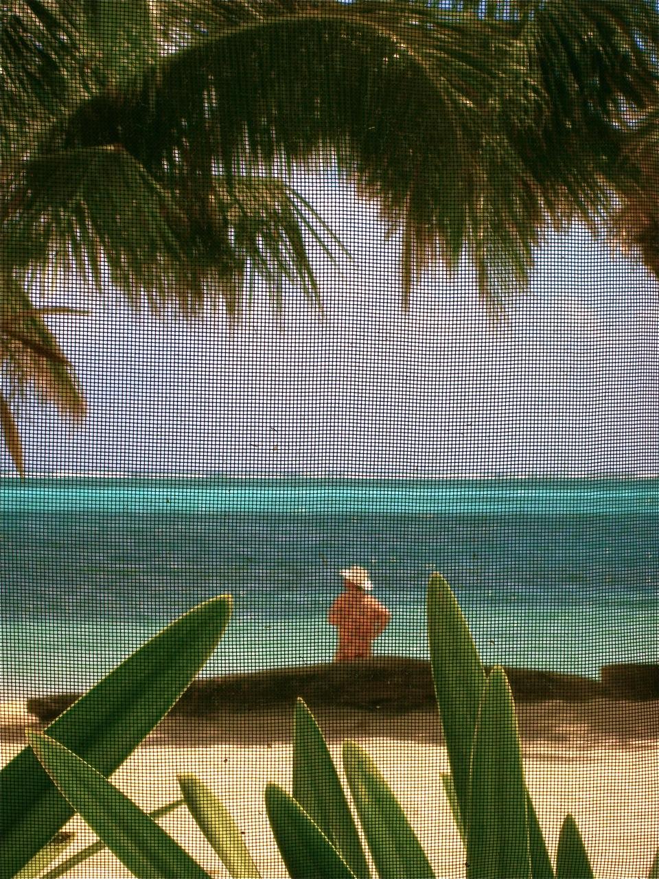 A view of the Caye Caulker beach through a screened window.