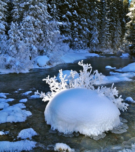 frost pillow Snake River Colorado