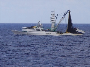 The foreign fishing vessel Marshalls 201 runs from the U.S. Coast Guard Cutter Walnut in September 2006 while still in U.S. waters. After the vessel was stopped and boarded, U.S. Coast Guard personnel determined the Marshalls 201 did not possess the proper permits to fish within U.S. waters and contained approximately 500 metric tons of tuna on board. The vessel and catch were seized and escorted to Guam for prosecution. The owner pled to one count and paid a penalty of $500,000.