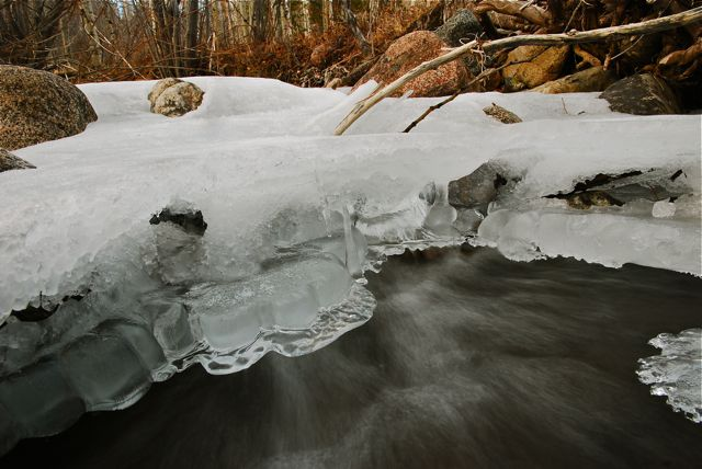 Beneath the ice of Meadow Creek.