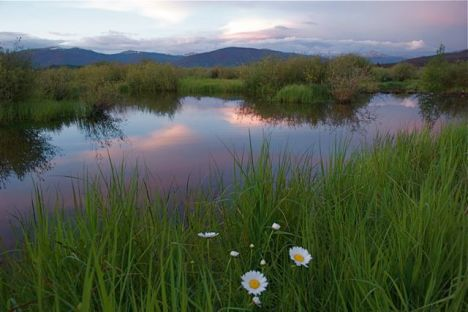 A summer day ends peacefully along the Meadow Creek wetlands in Frisco, Colorado.