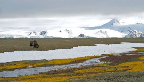 Antarctica permafrost