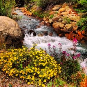 Snake River, Summit County Colorado