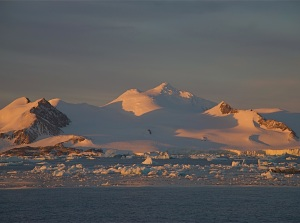 The ice fields of Antarctica
