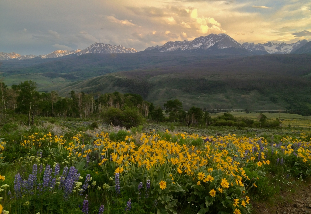 Lush wildflower meadows in the foreground contrast the story sunset over the Gore Range.