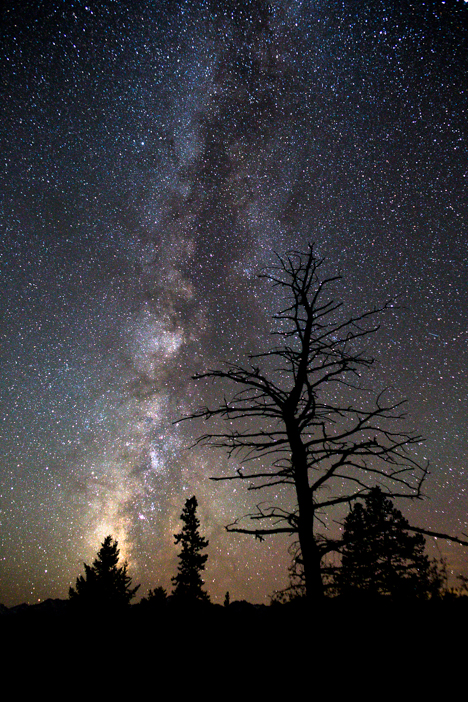 Summer Milky Way over White River National Forest.