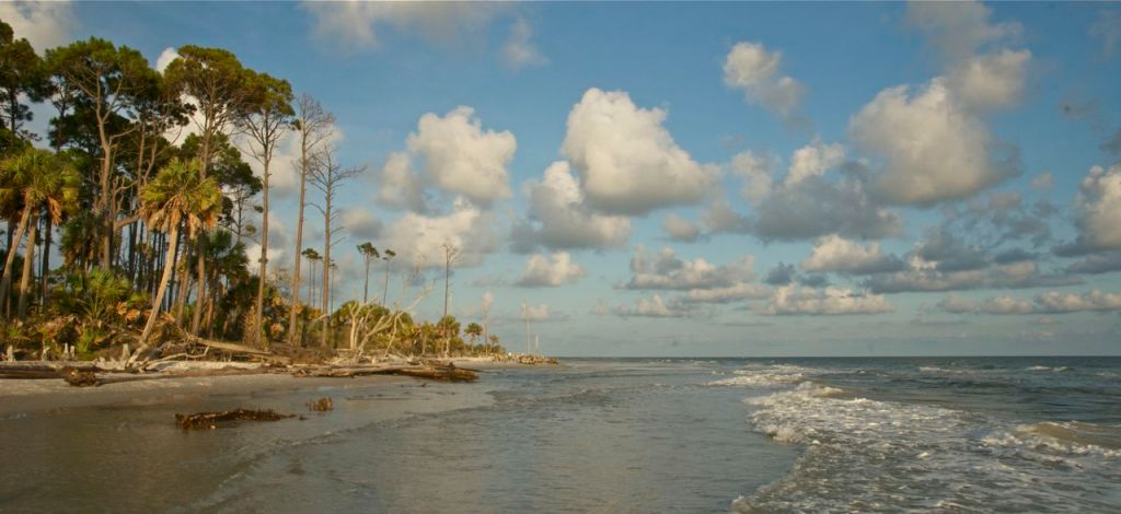 Researchers have documented changes in the annual cycle of sea level changes along the Florida Gulf Coast. bberwyn photo.
