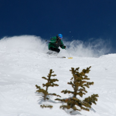 'Zuma powder. bberwyn photo.