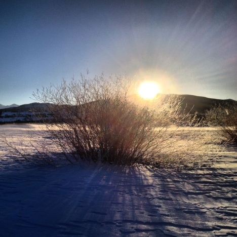 Snowy sunrise.