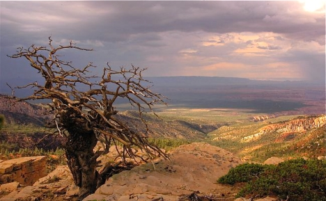 The Grand Canyon, bberwyn photo.