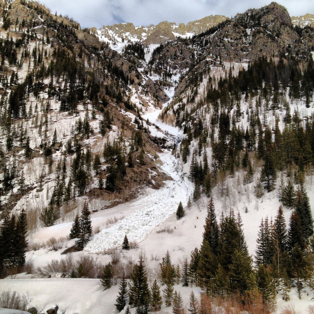 Wet snow avalanche, Tenmile Canyon.
