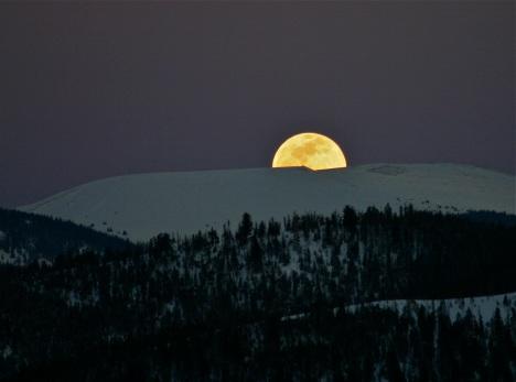 Moon-up!