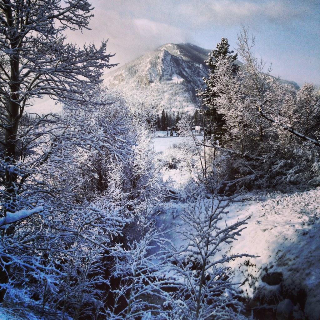 Snowy morning along Meadow Creek.