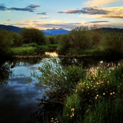 Colorado wetlands