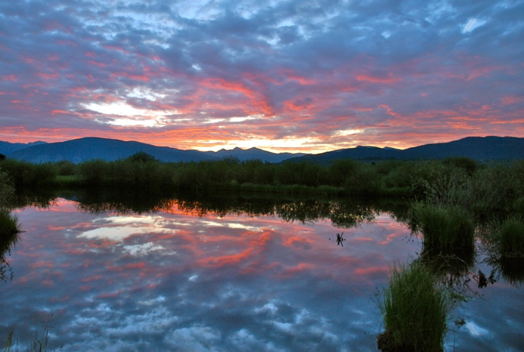 wetlands sunrise Colorado