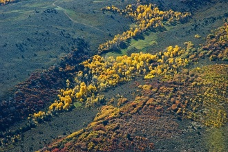 Intense aspen and scrub oak color in this aerial view of Eagle County, Colorado.