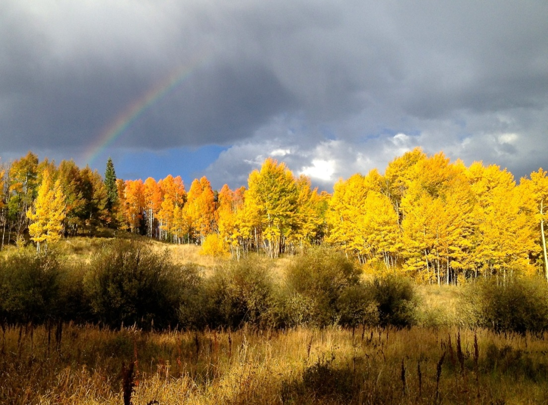 An autumn rainbow accents the sky above groves of colorful aspens in Summit County, Colorado.