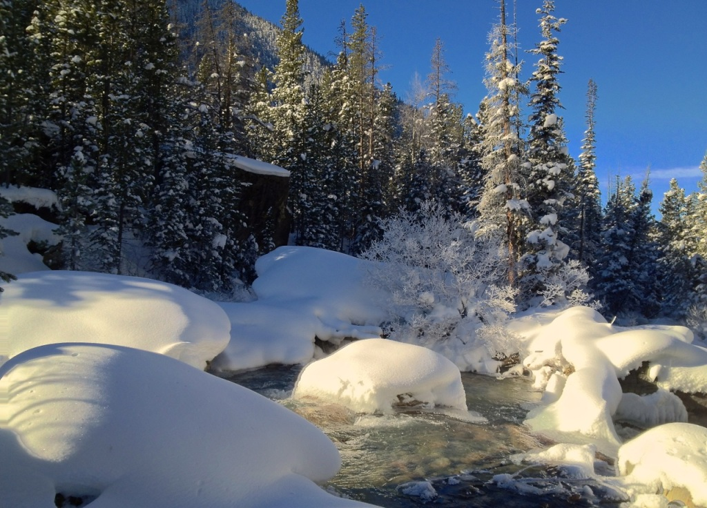 Fresh snow on Tenmile Creek in Summit County, Colorado.
