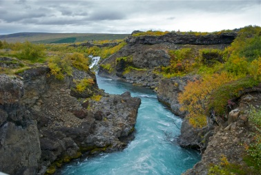 Glacial melt trickles through lava fields at Hraunfoss to form this mighty river.