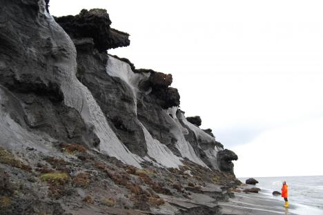 Exposed ice wedges at the coast of the Siberian island Muostakh. Photo courtesy Dr. Thomas Opel/AWI.