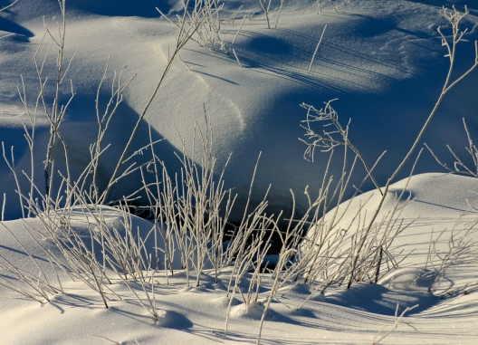 In winter's grasp ...