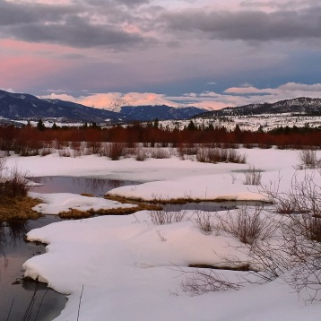Early signs of the spring melt along Meadow Creek.